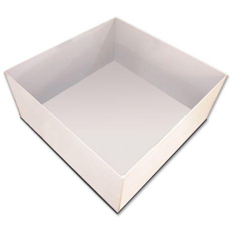 Open Field Box (Panlab)