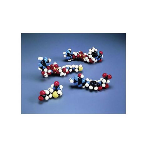 CPK® Assembled Atomic Models, Fatty Acids and Derivatives