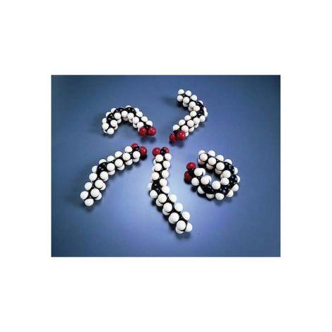 CPK® Assembled Atomic Models, Pyrimidine Nucleotides