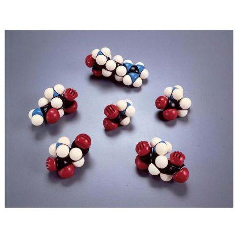 CPK Atomic Models Amino Acid Functional Groups
