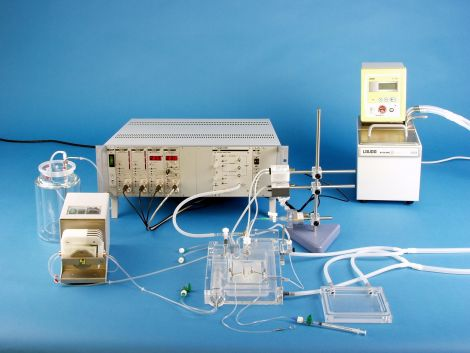 IPL-1 Core System for Isolated Mouse Lung