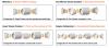 electroprep configurations